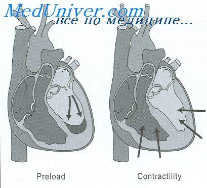 patologia rinichiului fetal