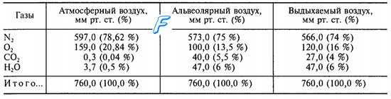 Составот на алвеоларен воздух. Гас состав алвеоларен воздух.