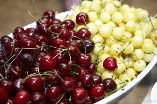 Черешня и вишня при панкреатите