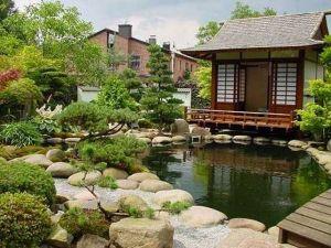 Декоративни егзотични растенија од Кина и Јапонија