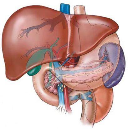 Hepatomegalie și sindromul hepato splenic