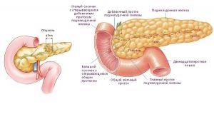 Insulinom cancer pancreatic: simptome, diagnostic, tratament, simptome, cauze