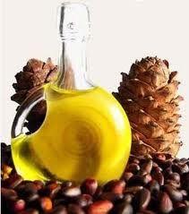 Кедровое масло при панкреатите