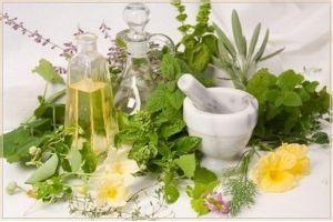 Лекарственные растения (травы) для детей
