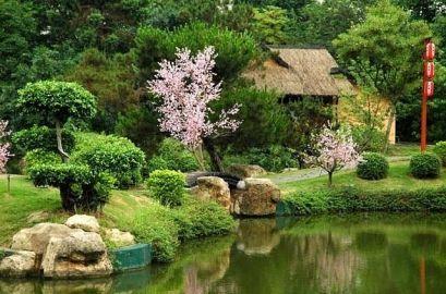 Изработка на градина заговор