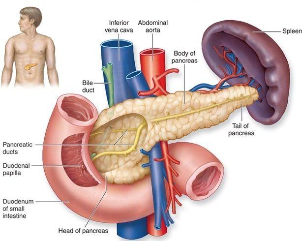 Акутен панкреатит во дијабетес