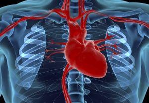 Открытый артериальный проток у детей: причины, симптомы, лечение