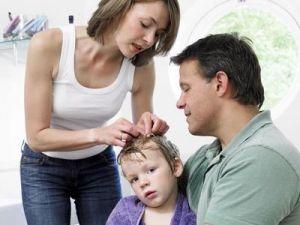 Педикулез у детей, лечение, причины, симптомы