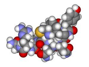 Пептидные гормоны плаценты