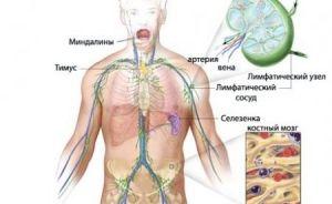 Примарен лимфом на централниот нервен систем