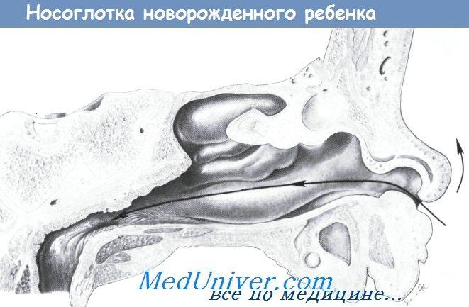 Způsoby instalace nazo- nebo orogastric trubky v novorozence