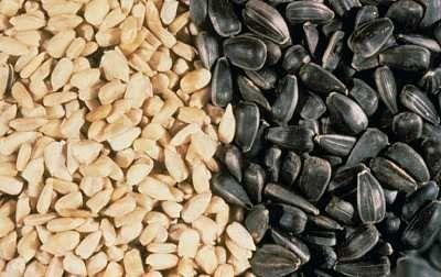 Semena pro gastritidu