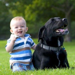 Стригущий лишай (трихофития) у детей, причины, лечение, симптомы