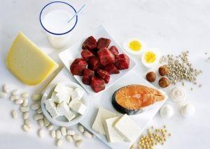 Употребление белка: сколько белка есть, вредно ли большое употребление белка?