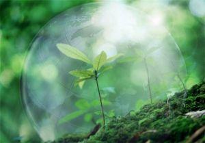 Воздушная среда причина болезней органов дыхания