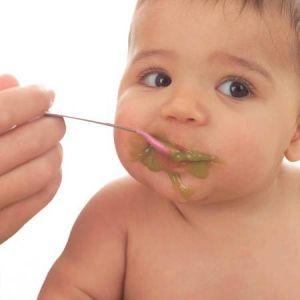 Введение в рацион твердой пищи