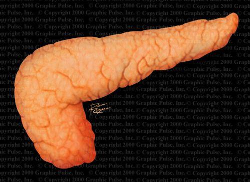 Здоровье поджелудочной железы